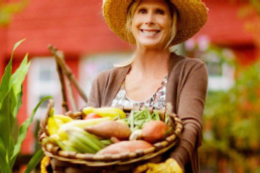 Corona: Mein Garten ist ein Stück Freiheit