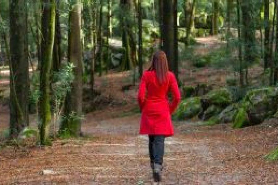 Einsamkeit: Keine Epidemie der Einsamkeit