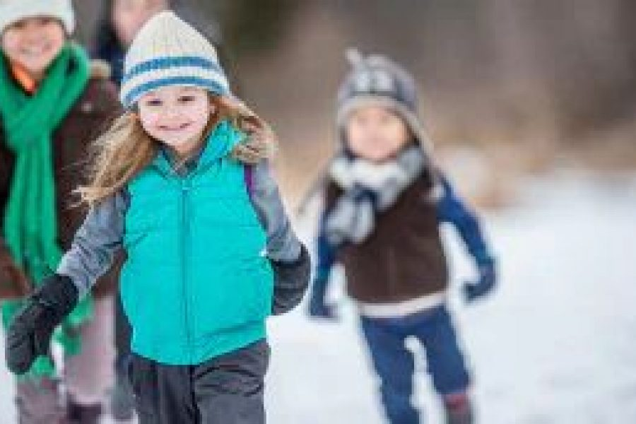 Bewegung: Natur tut Kindern gut